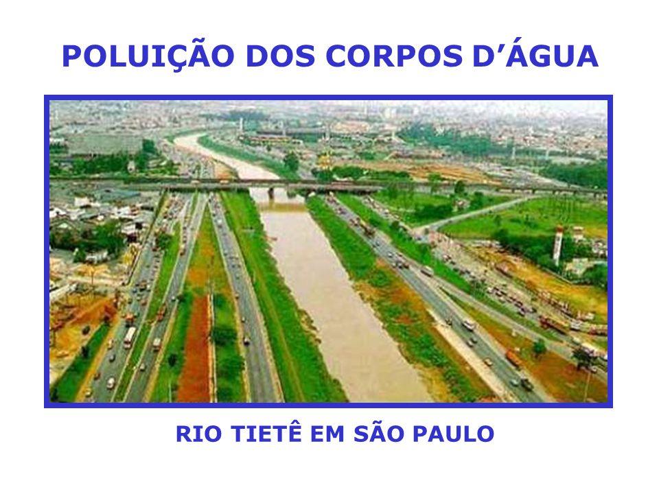 POLUIÇÃO DOS CORPOS D'ÁGUA RIO TIETÊ EM SÃO PAULO