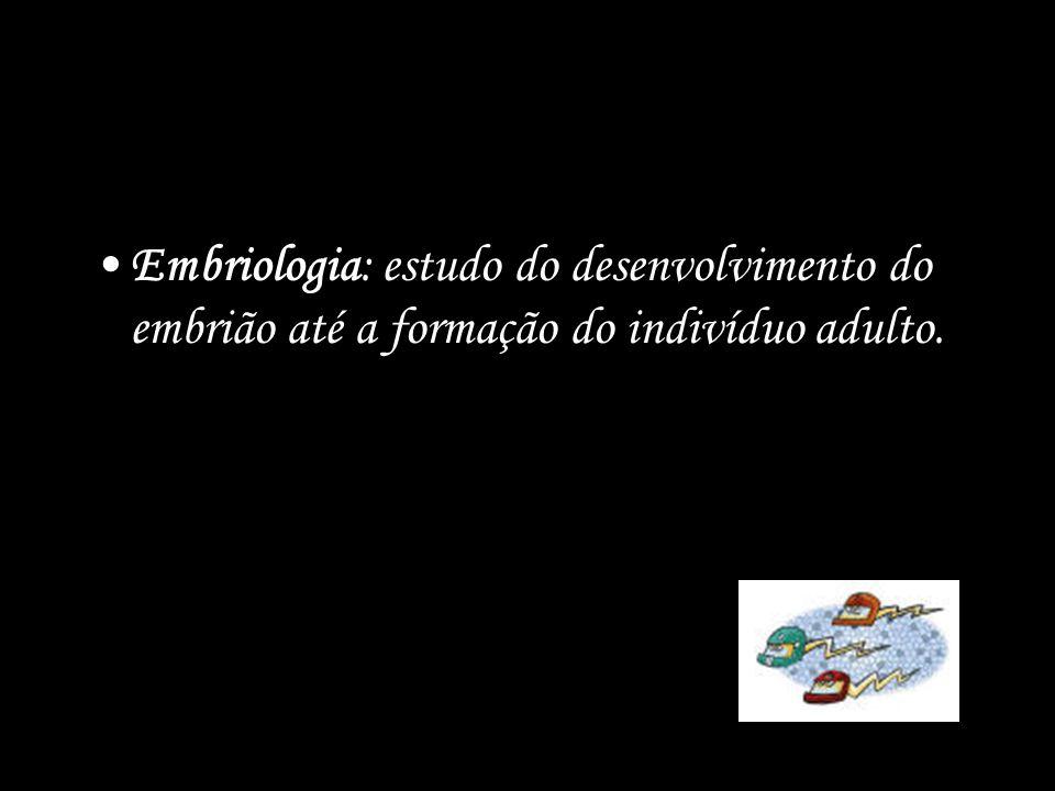 Quanto ao local do desenvolvimento do embrião, podemos dividir os animais em: –Ovulíparos: animais que apresentam fecundação externa e desenvolvimento no interior de um ovo aquático.