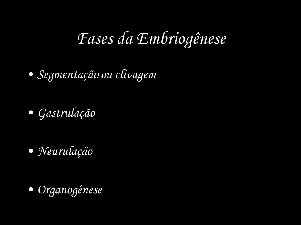 Fases da Embriogênese Segmentação ou clivagem Gastrulação Neurulação Organogênese
