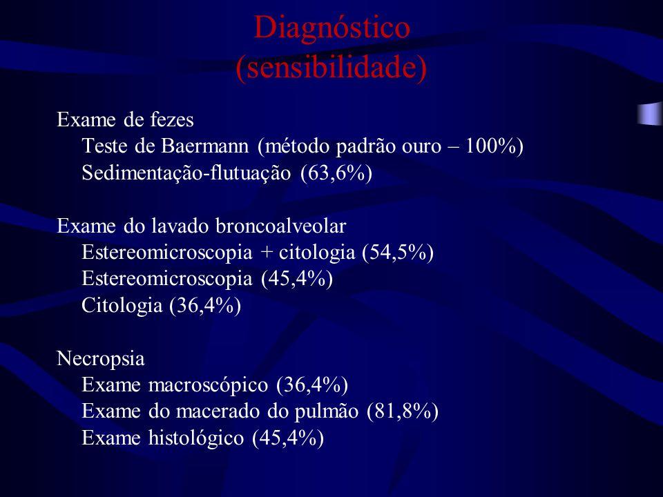 Diagnóstico (sensibilidade) Exame de fezes Teste de Baermann (método padrão ouro – 100%) Sedimentação-flutuação (63,6%) Exame do lavado broncoalveolar