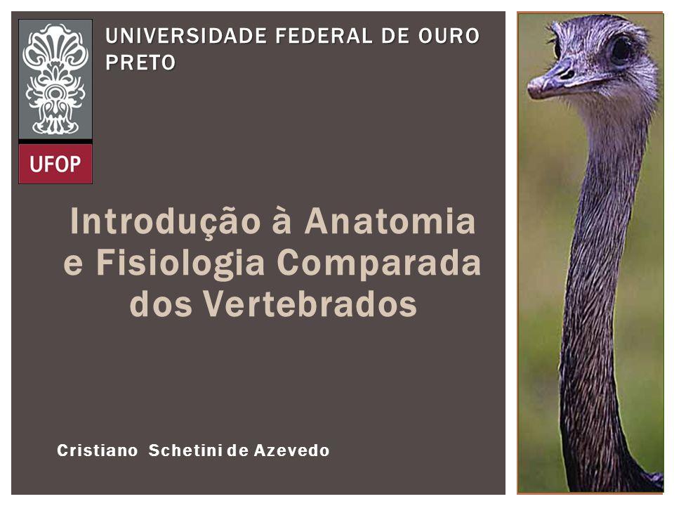 Introdução à Anatomia e Fisiologia Comparada dos Vertebrados Cristiano Schetini de Azevedo UNIVERSIDADE FEDERAL DE OURO PRETO