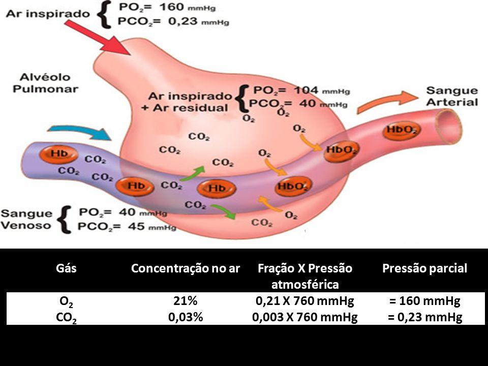 GásConcentração no arFração X Pressão atmosférica Pressão parcial O2O2 21%0,21 X 760 mmHg= 160 mmHg CO 2 0,03%0,003 X 760 mmHg= 0,23 mmHg