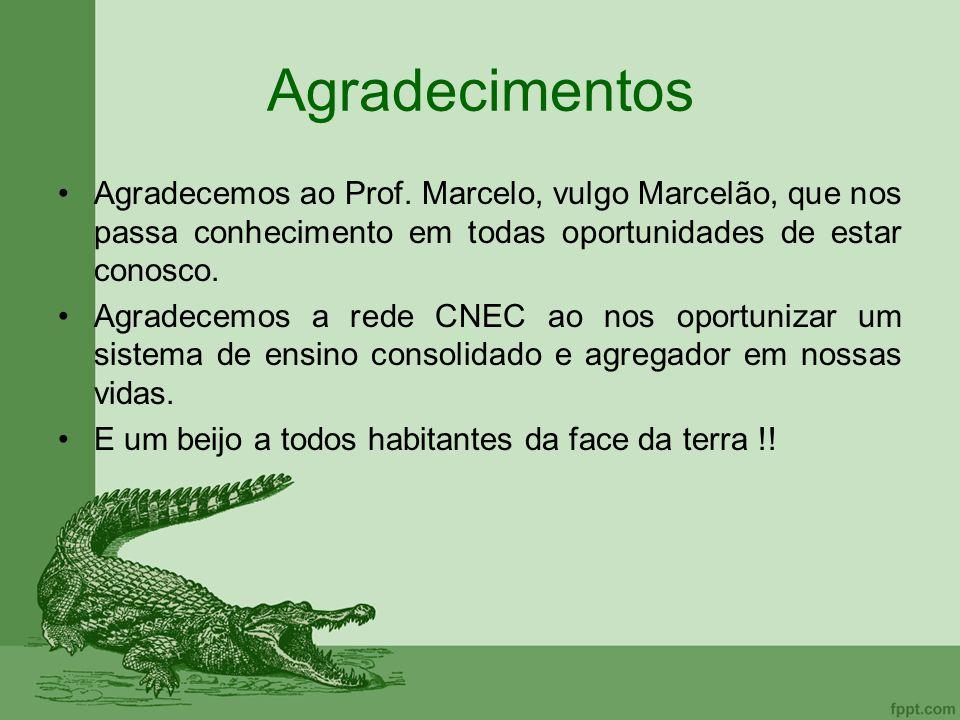 Agradecimentos Agradecemos ao Prof. Marcelo, vulgo Marcelão, que nos passa conhecimento em todas oportunidades de estar conosco. Agradecemos a rede CN