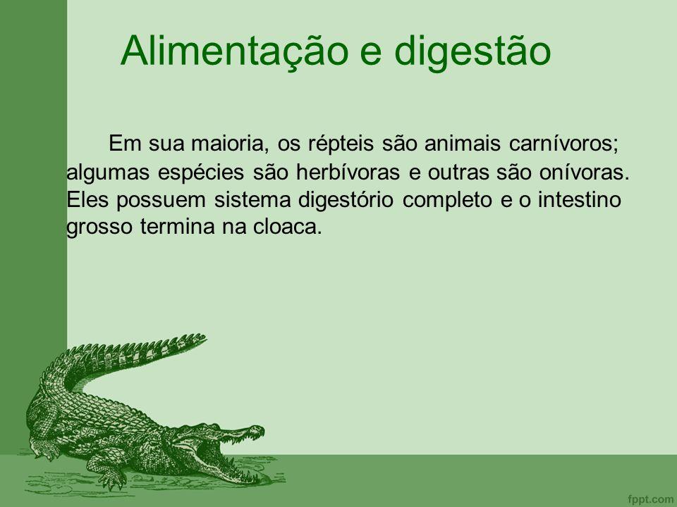 Alimentação e digestão Em sua maioria, os répteis são animais carnívoros; algumas espécies são herbívoras e outras são onívoras. Eles possuem sistema