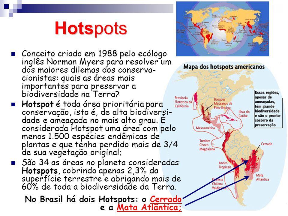 Os grandes biomas brasileiros