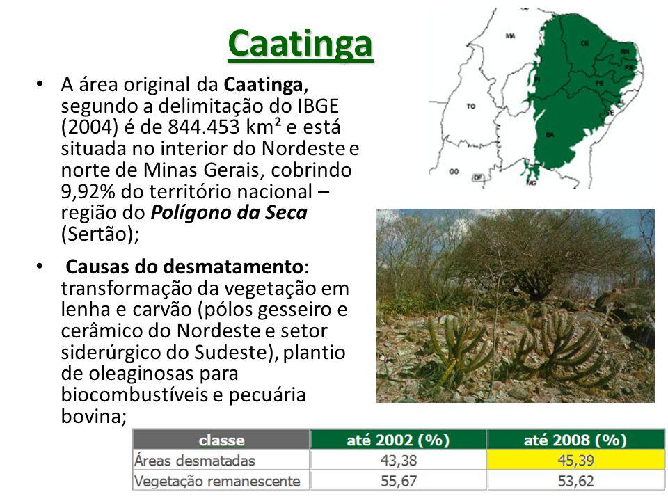 Cerrado Área: originalmente eram 2.039.386km², segundo IBGE (2004), ocupando 25% do território nacional; Caixa d`água do Brasil: nesta área encontram- se as nascentes das maiores bacias hidrográficas da América do Sul (Amazônica, Tocantins, São Francisco e Prata), com enorme disponibilidade de recursos hídricos; Diversidade biológica: o Cerrado brasileiro é reconhecido como a savana mais rica do mundo, abrigando nos diversos ecossistemas uma flora com mais de 11.000 espécies de plantas nativas, das quais 4.400 são endêmicas; Causas do desmatamento: transformação da vegetação em carvão (siderúrgicas do Sudeste) e o avanço da agropecuária, com destaque para soja, gado bovino e algodão;