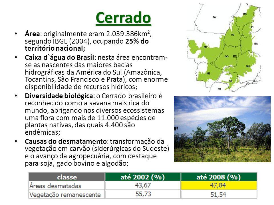 Área de Expansão da agropecuária no Cerrado Brasileiro (em milhões de hectares – segundo a EMBRAPA) Área Total204 Área Agricultável (desmatada) 137 Pastagem(35) Culturas Anuais(10) Culturas Perenes e Florestas (2) Área Disponível90