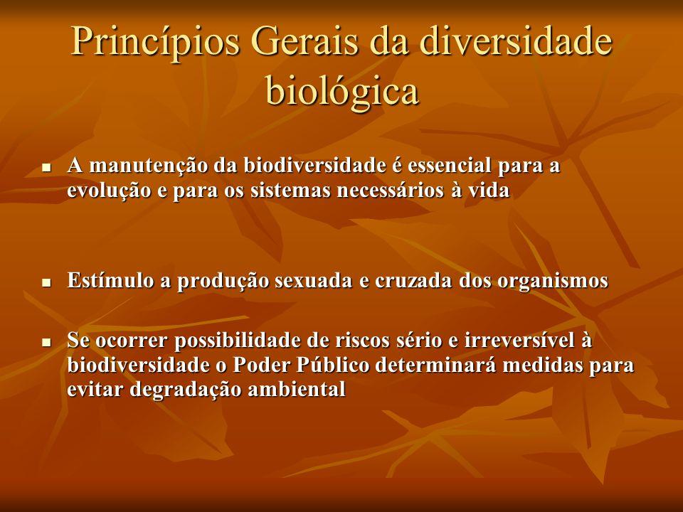 Princípios Gerais da diversidade biológica A manutenção da biodiversidade é essencial para a evolução e para os sistemas necessários à vida A manutenç