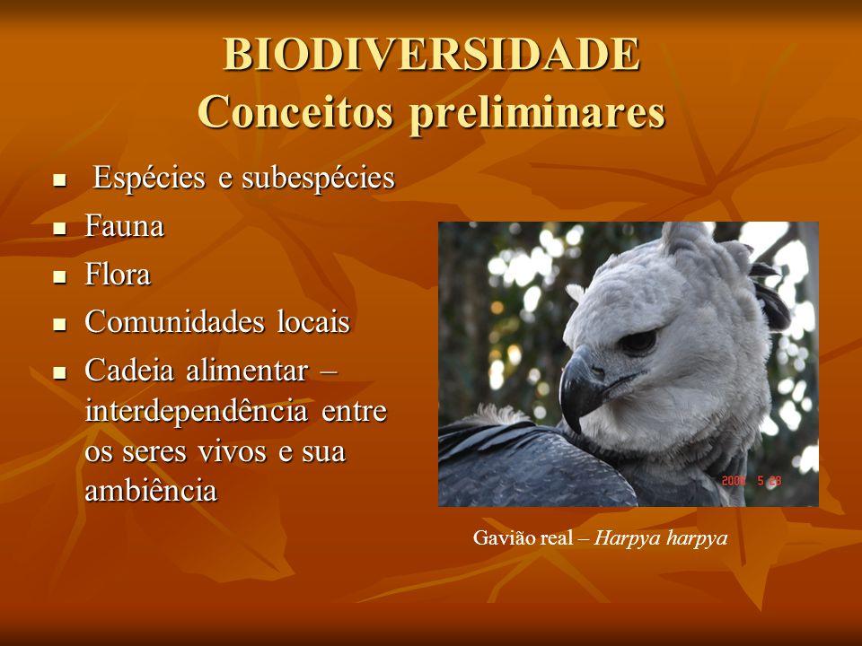 BIODIVERSIDADE Conceitos preliminares Espécies e subespécies Espécies e subespécies Fauna Fauna Flora Flora Comunidades locais Comunidades locais Cade