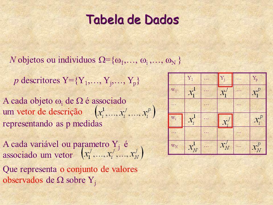 Tabela de Dados Y1Y1 …YjYj …YpYp w1w1 …… ……… wiwi … ……… wNwN …… N objetos ou individuos  ={  1,…,  i,…,  N } p descritores Y={Y 1,…, Y j,…, Y p }