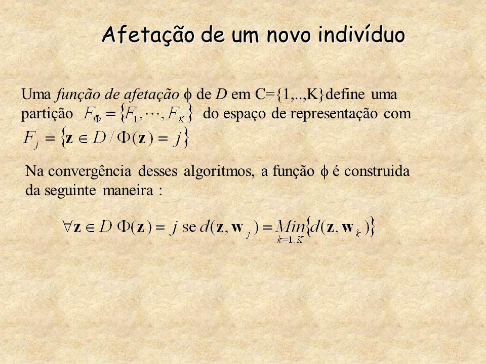 Afetação de um novo indivíduo Uma função de afetação  de D em C={1,..,K}define uma partição do espaço de representação com Na convergência desses al