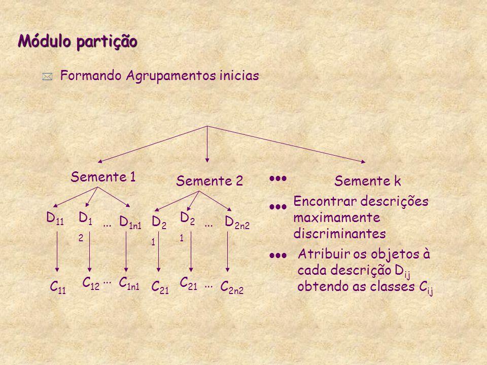 Módulo partição * Formando Agrupamentos inicias Semente 1 Semente 2Semente k  D 11 D12D12 D 1n1 D21D21 D21D21 D 2n2 …… Encontrar descrições maximam