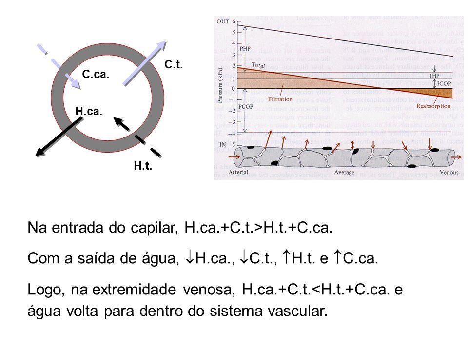 Pressão coloidosmótica é uma função da [proteínas] e seus pesos moleculares como essas têm carga negativa, ocorre uma redistribuição de íons entre os
