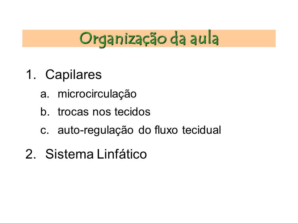 Organização da aula 1.Capilares a.microcirculação b.trocas nos tecidos c.auto-regulação do fluxo tecidual 2.Sistema Linfático