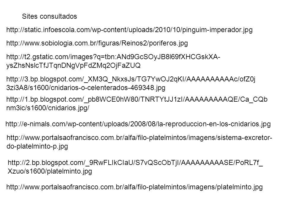 http://1.bp.blogspot.com/_pb8WCE0hW80/TNRTYtJJ1zI/AAAAAAAAAQE/Ca_CQb nm3ic/s1600/cnidarios.jpg/ http://3.bp.blogspot.com/_XM3Q_NkxsJs/TG7YwOJ2qKI/AAAA