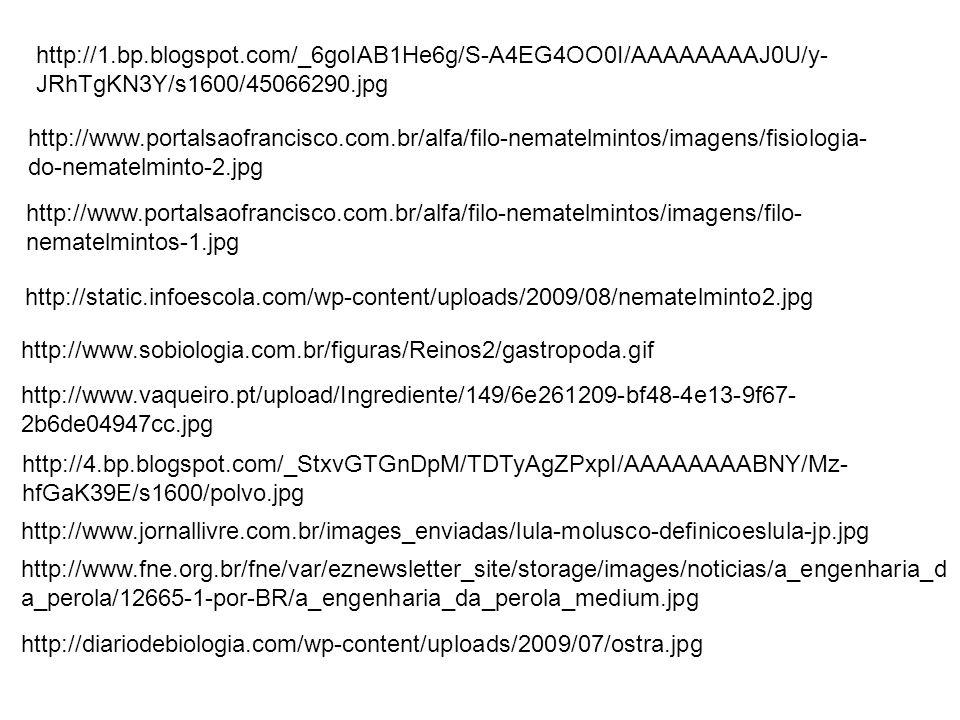 http://1.bp.blogspot.com/_6goIAB1He6g/S-A4EG4OO0I/AAAAAAAAJ0U/y- JRhTgKN3Y/s1600/45066290.jpg http://www.portalsaofrancisco.com.br/alfa/filo-nematelmi