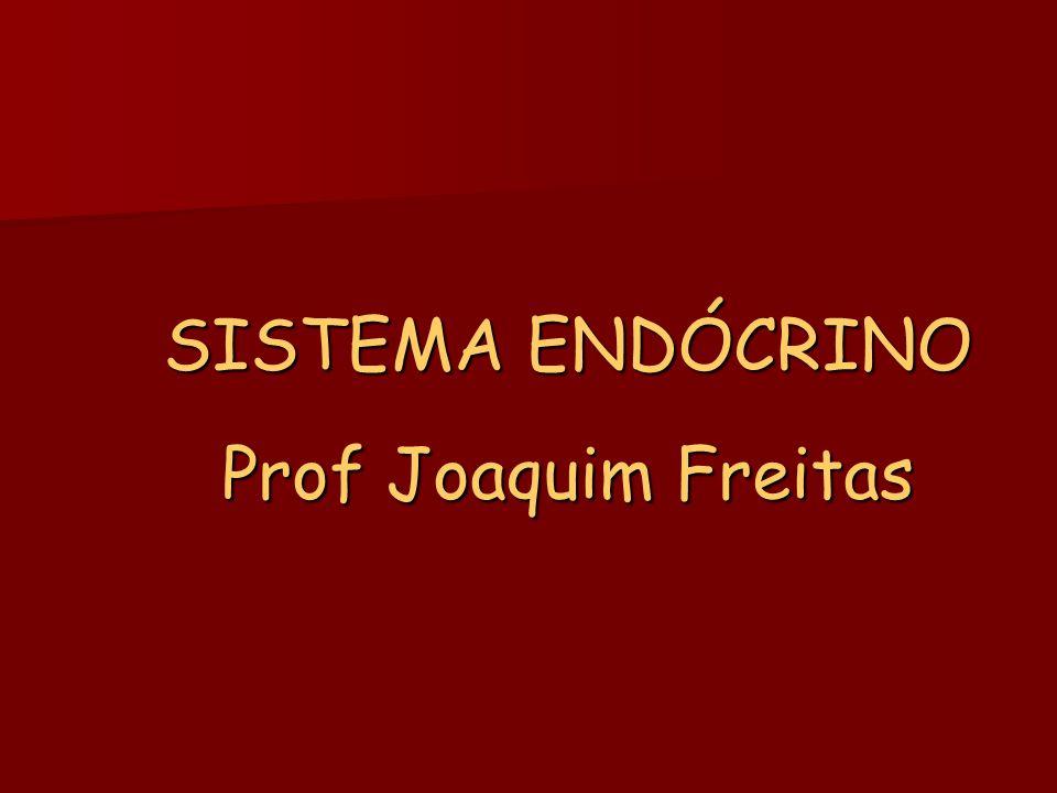 SISTEMA ENDÓCRINO Prof Joaquim Freitas