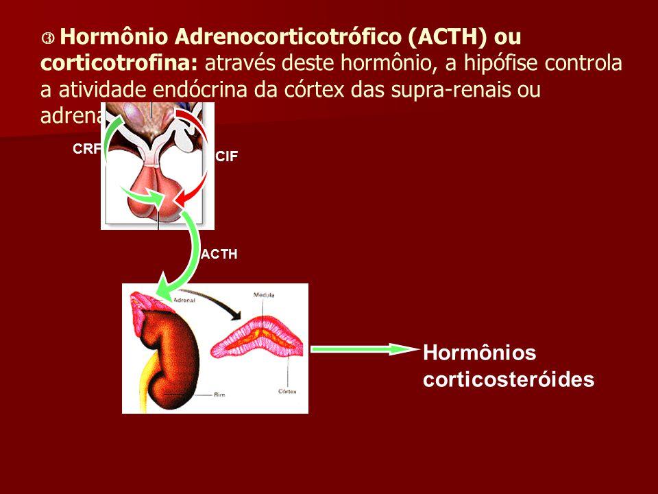 Hormônio Adrenocorticotrófico (ACTH) ou corticotrofina: através deste hormônio, a hipófise controla a atividade endócrina da córtex das supra-renais o
