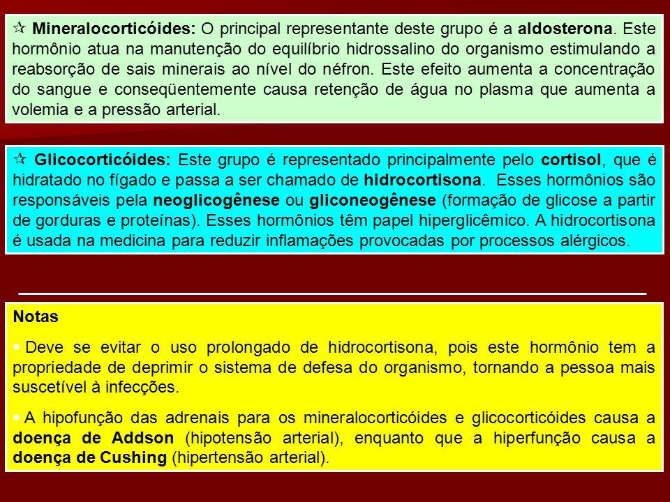  Mineralocorticóides: O principal representante deste grupo é a aldosterona. Este hormônio atua na manutenção do equilíbrio hidrossalino do organismo