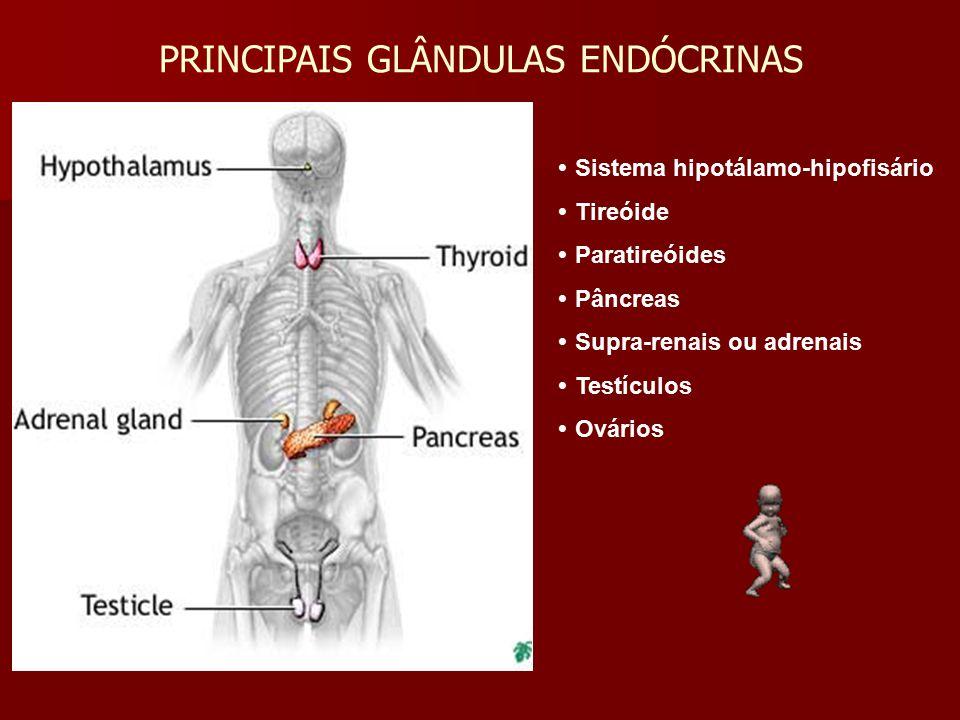  Sistema hipotálamo-hipofisário  Tireóide  Paratireóides  Pâncreas  Supra-renais ou adrenais  Testículos  Ovários PRINCIPAIS GLÂNDULAS ENDÓCRIN