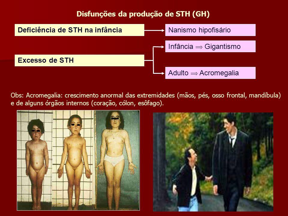 Disfunções da produção de STH (GH) Deficiência de STH na infânciaNanismo hipofisário Excesso de STH Infância  Gigantismo Adulto  Acromegalia Obs: A
