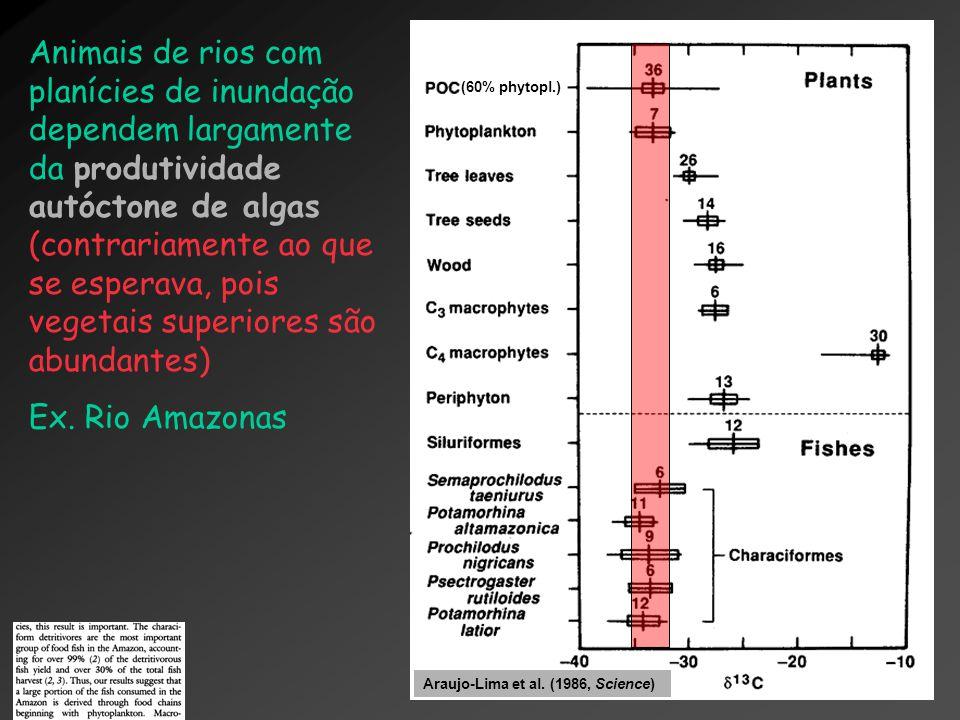 Animais de rios com planícies de inundação dependem largamente da produtividade autóctone de algas (contrariamente ao que se esperava, pois vegetais s