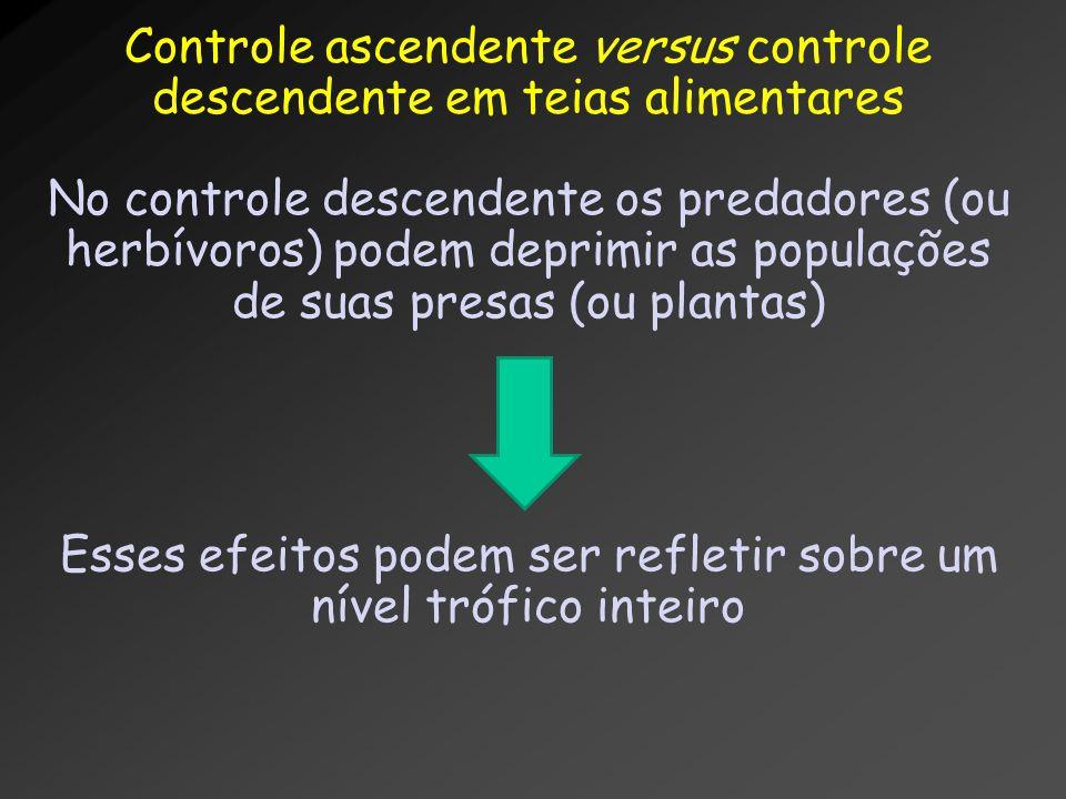Controle ascendente versus controle descendente em teias alimentares No controle descendente os predadores (ou herbívoros) podem deprimir as populaçõe
