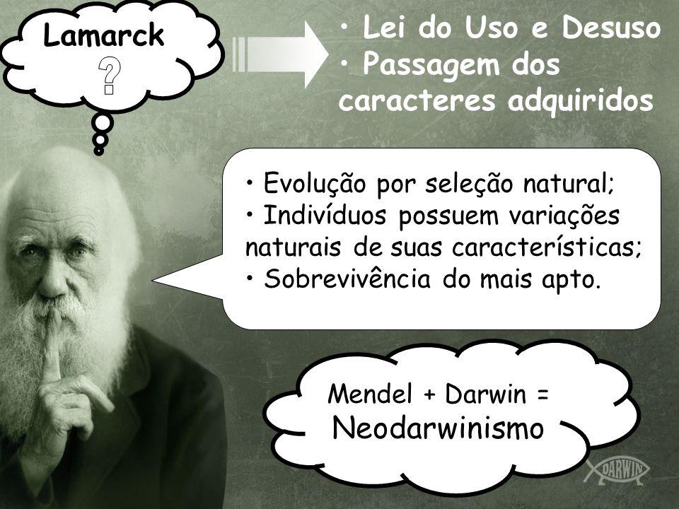 Lamarck Lei do Uso e Desuso Passagem dos caracteres adquiridos Evolução por seleção natural; Indivíduos possuem variações naturais de suas características; Sobrevivência do mais apto.