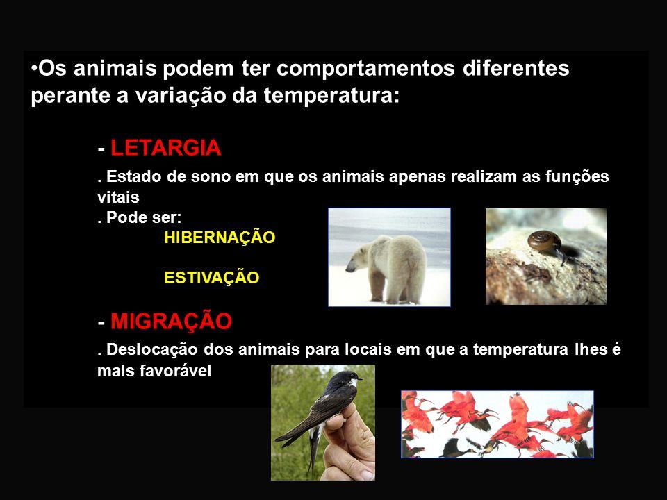Regulação da temperatura: HOMEOTÉRMICOS (DE TEMPERATURA CONSTANTE). Mantêm a temperatura constante. EX: mamíferos e aves POIQUILOTÉRMICOS (DE TEMPERAT