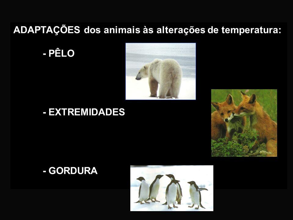 Os animais podem ter comportamentos diferentes perante a variação da temperatura: - LETARGIA. Estado de sono em que os animais apenas realizam as funç