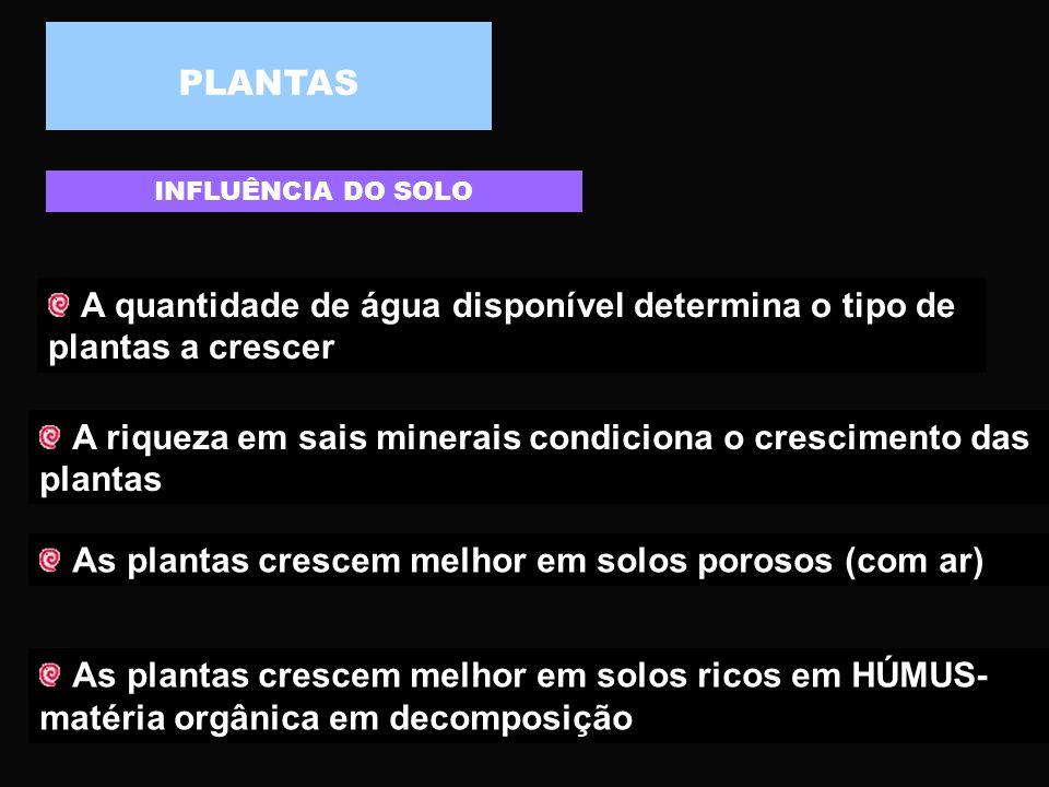 SOLO SOLO – Combinação de: Matéria mineral - 35% Água - 25% Ar – 20% Matéria orgânica – 15% Seres Vivos - 5% O solo encontra-se dividido em várias cam
