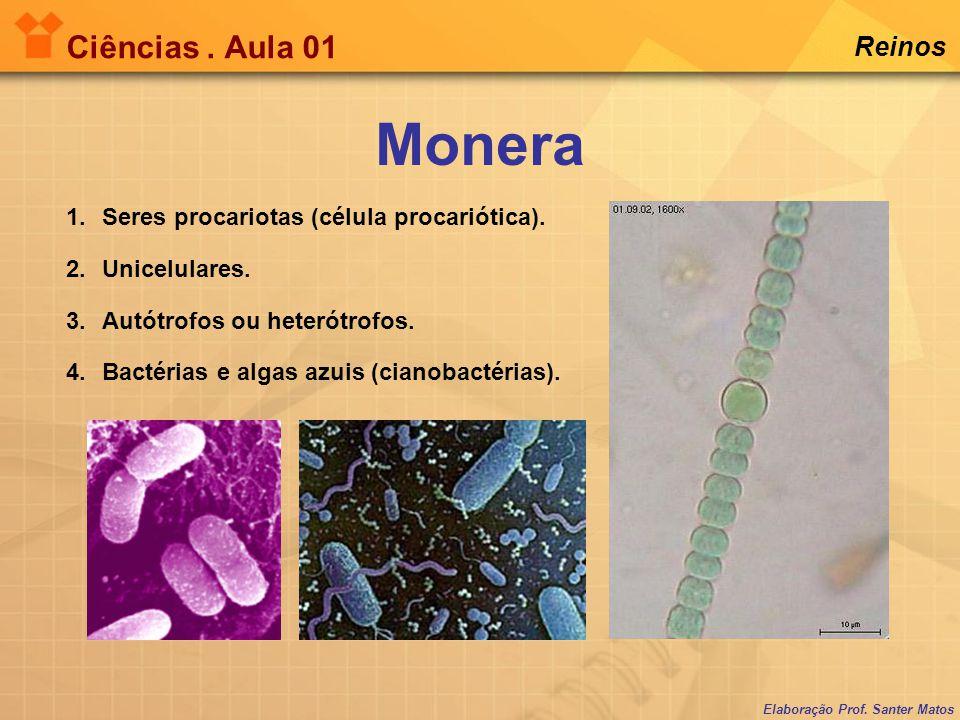 Elaboração Prof. Santer Matos Ciências. Aula 01 Reinos 1.Seres procariotas (célula procariótica). 2.Unicelulares. 3.Autótrofos ou heterótrofos. 4.Bact