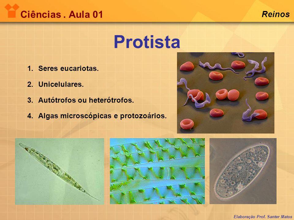 Elaboração Prof. Santer Matos Ciências. Aula 01 Reinos 1.Seres eucariotas. 2.Unicelulares. 3.Autótrofos ou heterótrofos. 4.Algas microscópicas e proto