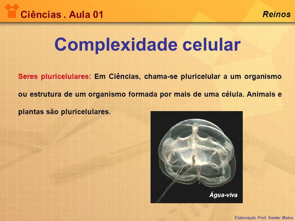 Elaboração Prof. Santer Matos Ciências. Aula 01 Reinos Complexidade celular Seres pluricelulares: Seres pluricelulares: Em Ciências, chama-se pluricel