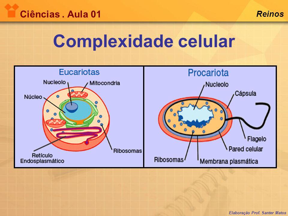 Elaboração Prof. Santer Matos Ciências. Aula 01 Reinos Complexidade celular