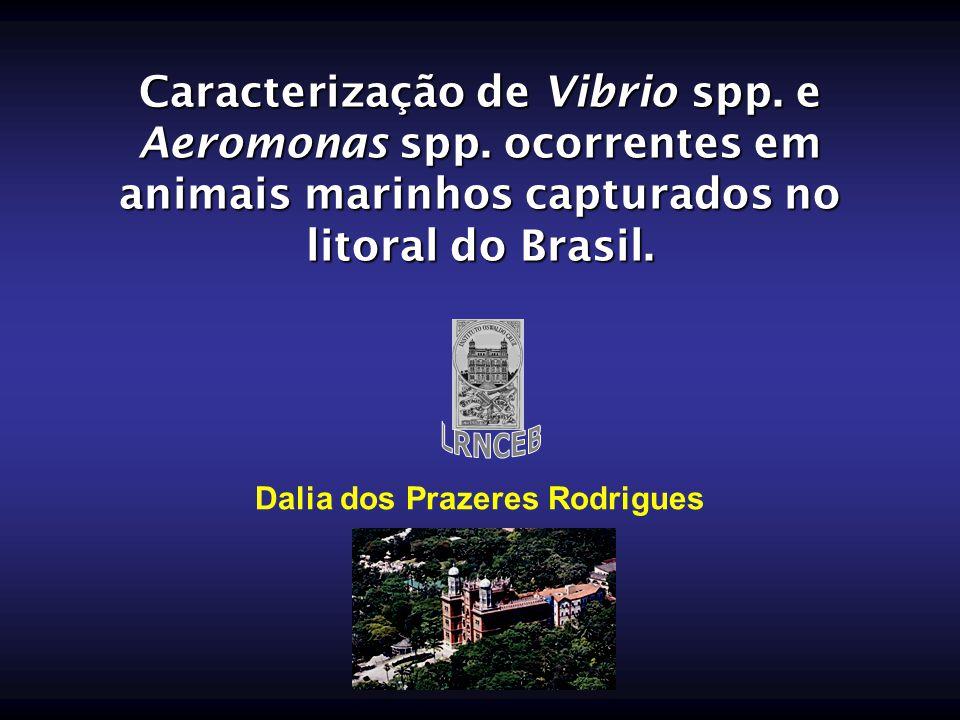 Caracterização de Vibrio spp. e Aeromonas spp. ocorrentes em animais marinhos capturados no litoral do Brasil. Dalia dos Prazeres Rodrigues