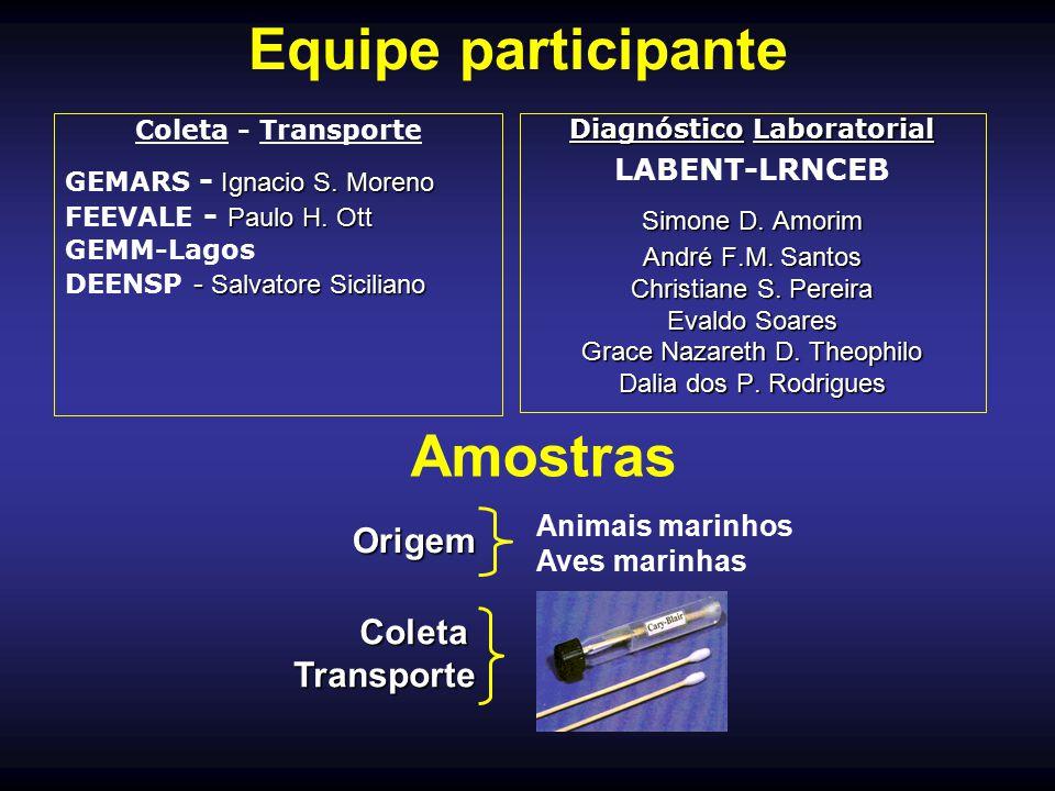 Equipe participante Coleta - Transporte Ignacio S. Moreno GEMARS - Ignacio S. Moreno Paulo H. Ott FEEVALE - Paulo H. Ott GEMM-Lagos - Salvatore Sicili