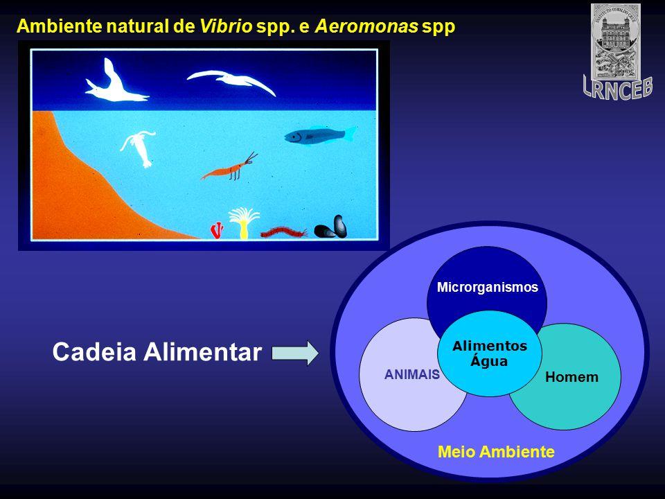 Ambiente natural de Vibrio spp. e Aeromonas spp ANIMAIS Homem Alimentos Água Microrganismo s Meio Ambiente ANIMAIS Homem Alimentos Água Microrganismos