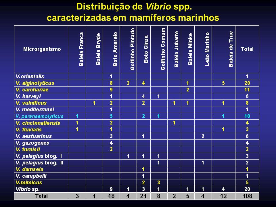 Distribuição de Vibrio spp. caracterizadas em mamíferos marinhos