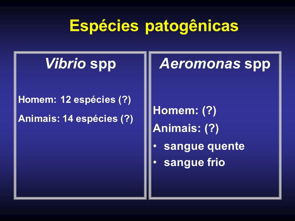 Vibrio spp Homem: 12 espécies (?) Animais: 14 espécies (?) Aeromonas spp Homem: (?) Animais: (?) sangue quente sangue frio Espécies patogênicas