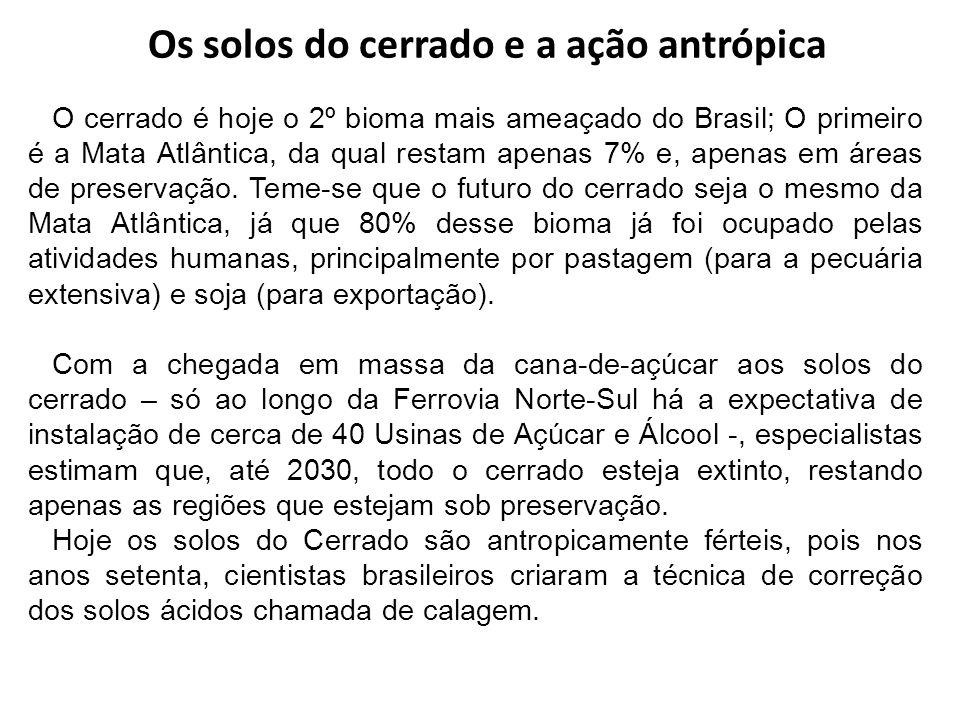 Os solos do cerrado e a ação antrópica O cerrado é hoje o 2º bioma mais ameaçado do Brasil; O primeiro é a Mata Atlântica, da qual restam apenas 7% e,