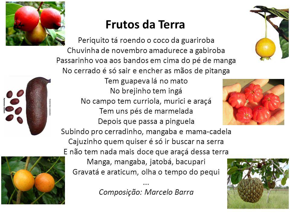 Frutos da Terra Periquito tá roendo o coco da guariroba Chuvinha de novembro amadurece a gabiroba Passarinho voa aos bandos em cima do pé de manga No