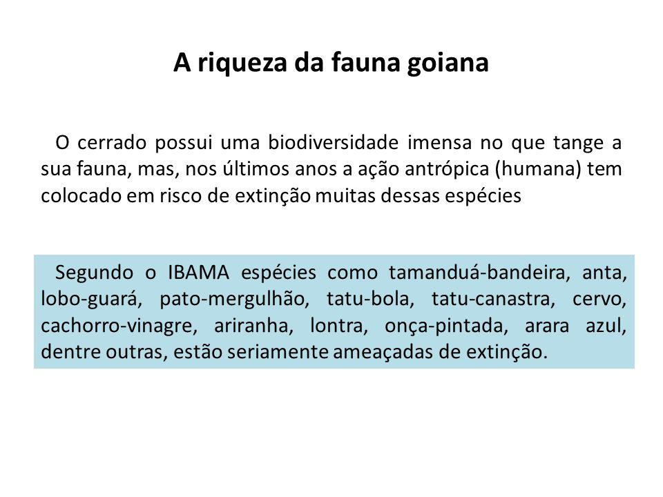 A riqueza da fauna goiana O cerrado possui uma biodiversidade imensa no que tange a sua fauna, mas, nos últimos anos a ação antrópica (humana) tem col