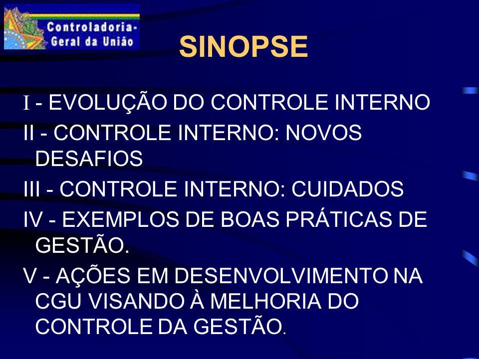 SINOPSE I - EVOLUÇÃO DO CONTROLE INTERNO II - CONTROLE INTERNO: NOVOS DESAFIOS III - CONTROLE INTERNO: CUIDADOS IV - EXEMPLOS DE BOAS PRÁTICAS DE GESTÃO.