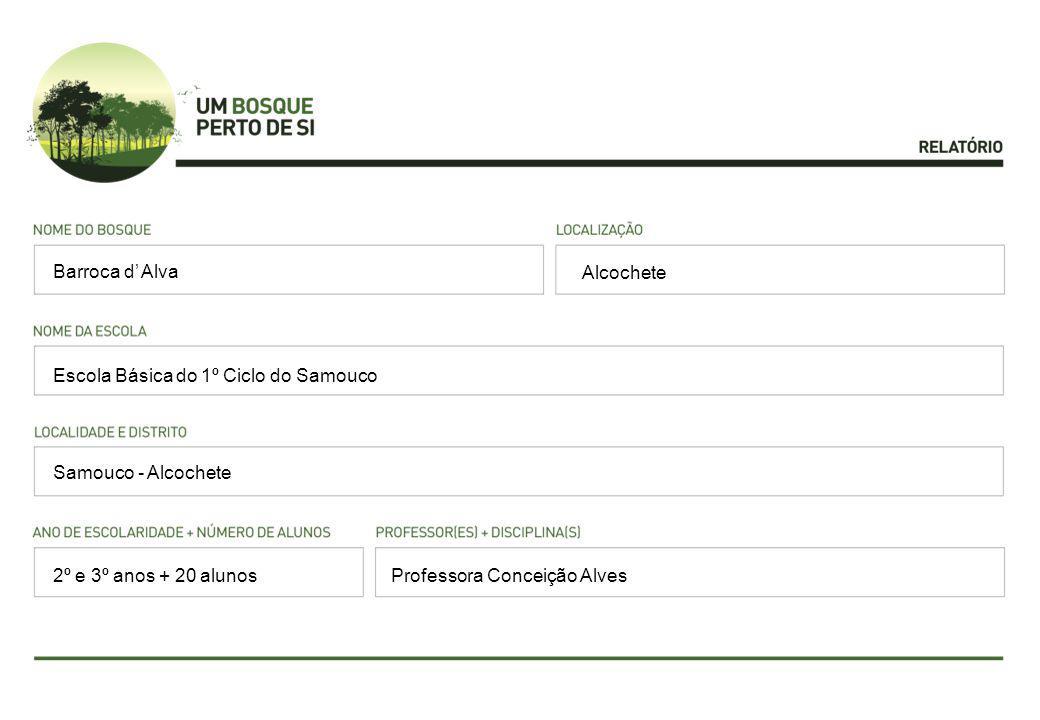 Alcochete Escola Básica do 1º Ciclo do Samouco Samouco - Alcochete Professora Conceição Alves Barroca d' Alva 2º e 3º anos + 20 alunos