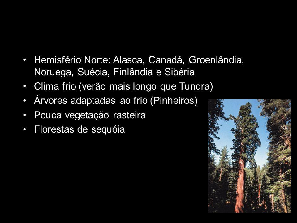 Hemisfério Norte: Alasca, Canadá, Groenlândia, Noruega, Suécia, Finlândia e Sibéria Clima frio (verão mais longo que Tundra) Árvores adaptadas ao frio