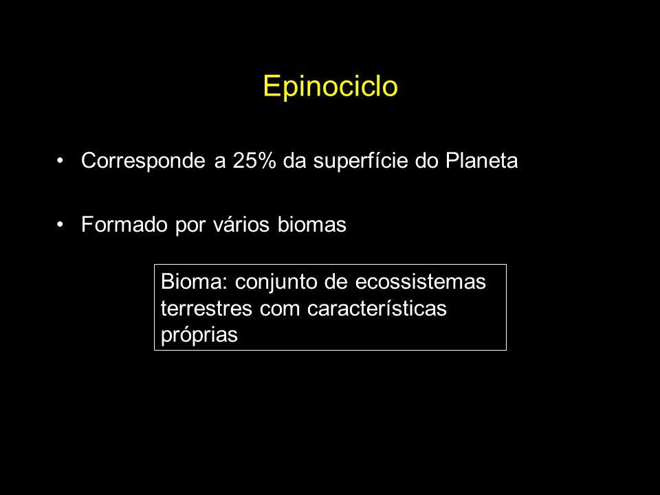 Epinociclo Corresponde a 25% da superfície do Planeta Formado por vários biomas Bioma: conjunto de ecossistemas terrestres com características própria