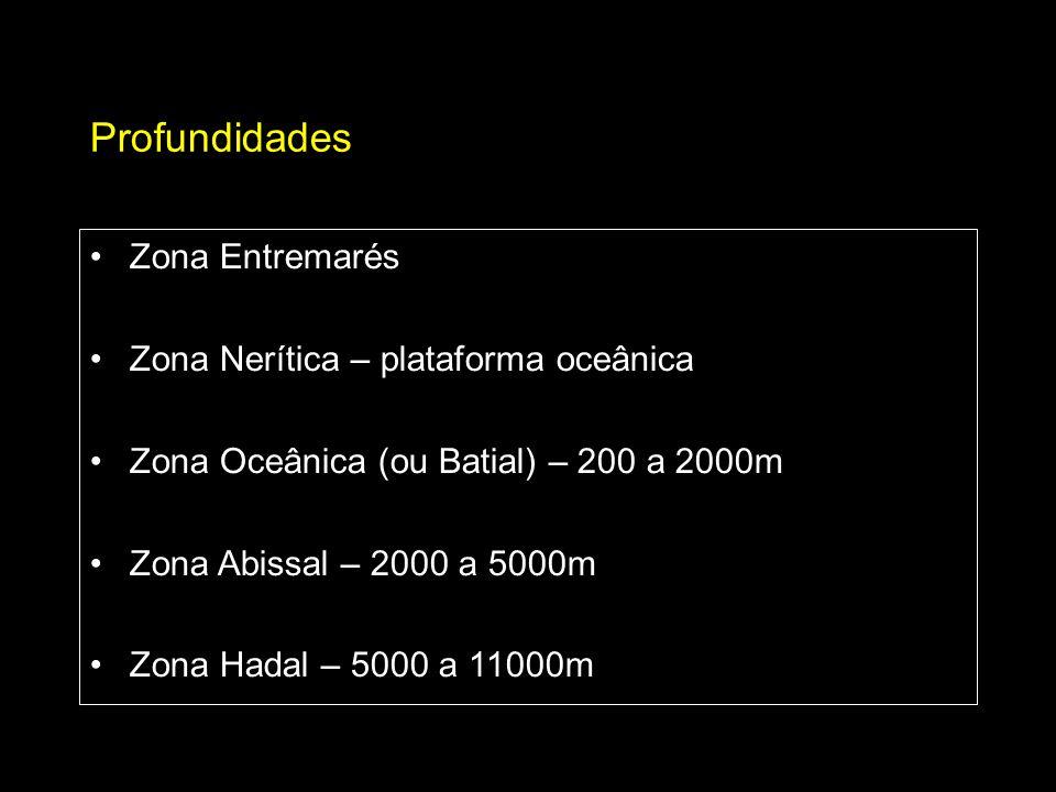 Profundidades Zona Entremarés Zona Nerítica – plataforma oceânica Zona Oceânica (ou Batial) – 200 a 2000m Zona Abissal – 2000 a 5000m Zona Hadal – 500