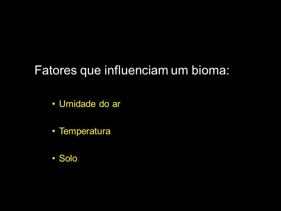 Fatores que influenciam um bioma: Umidade do ar Temperatura Solo
