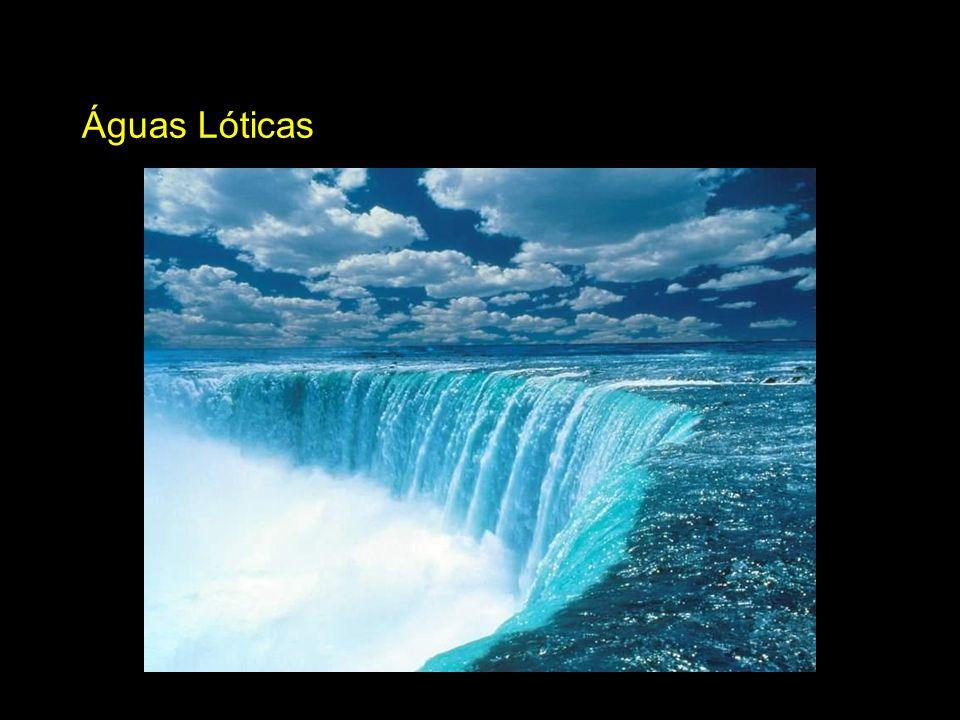 Águas Lóticas